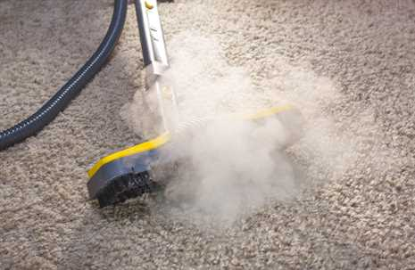 Steam Cleaning in Winnipeg - Carpet Cleaning & Upholstery
