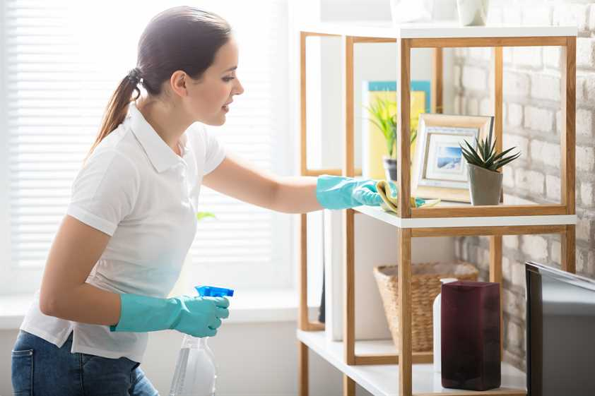 winnipeg house cleaning reviews